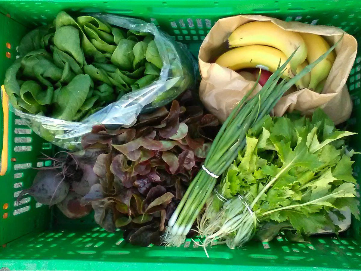 groente-en-fruitabonnement